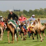 Camel race photo (compressed)